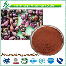 GMP factory supply high quality plant extract grape fruit seed extract powder