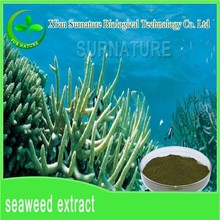 supplying high concentrated dried seaweed extract