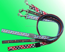 Hot Salses New 1 Inch Special Nylon Dog Leash