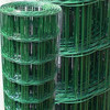 """4"""" X 2"""" pvc coated welded wire mesh fence&pvc coated holland wire mesh fence&Dutch woven wire mesh"""