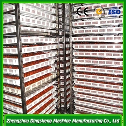 2015 New Type vegetable dehydrator/Fruit and vegetable drying machine/fruit dehydrator