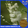 top quality black cohosh root extract with 8% Triterpene glycosides