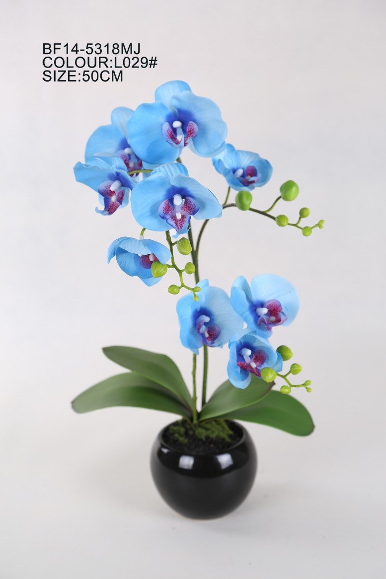 20 Silk Blue Color Real Touch Artificial Phalaenopsis Orchid