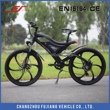 2015 FJ Sport Type electric bicycle, electric cargo bicycle in low price