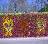 cartoon flower wall with high quality fabric flowers decorative wall