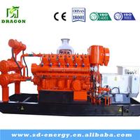 Low Consumption Environmentally Natural Gas Generator Set