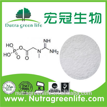 Factory price high quality Creatinol Phosphate
