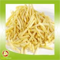 Hot Selling Frozen Potato Chips/Frozen French Fries From China Supplier