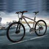 Titanium mtb frame mountain bicycle with 30 speed