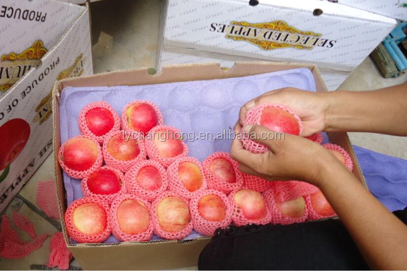 [HOT] fresh apple chinese apple fruit gala
