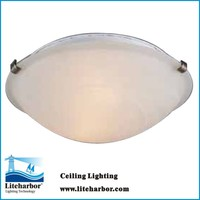 16 inch glass waterproof Fluorescent Ceiling Light Fittings Manufacturer