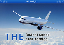 fast professional sea freight shipping service