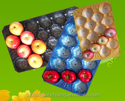 29X49cm Many Calibers Colors FDA Approved Fruit And Vegetable Packaging Trays