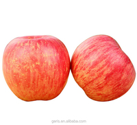Shanxi fresh red Fuji apple