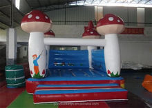 harry potter inflatable combo /juegos inflables