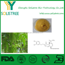 olive leaf extract powder,pure natural 10%-60% Oleuropein
