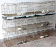 Professional Design Galvanized Commercial Rabbit Cages