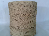 cheap paper twine from professional factory