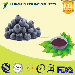 raw material Bilberry Extract/Bilberry Powder/Anthocyanidin 25%