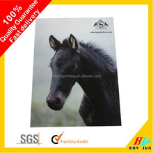 High quality excellent color effect advertising poster