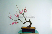 China supplier man-made high imitation decorative artificial flower bonsai red plum for sale