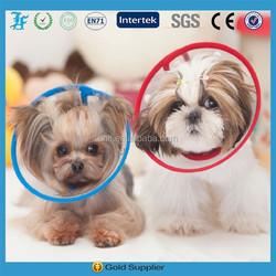 Collar Elizabethan Wound Healing Cone, Protection Pet Collar medical,pet protecting collar