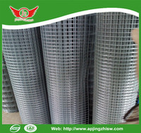 Low Price Galvanized Welded Wire Mesh For Cage In Stock