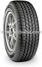 Michelin Pilot Exalto A / S Tires