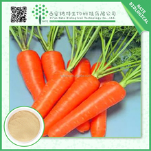Factory Direct Supply 100% Natural Carrot extract 20% Beta carotene by HPLC