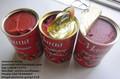 estable de calidad en lata de pasta de tomate de la fábrica de suministro de doble concentrado