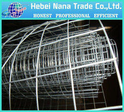 China direct factory fenced dog kennels / wire mesh dog cage