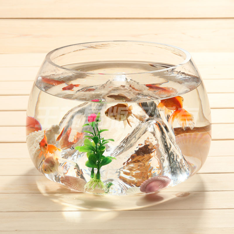 Unique en forme de bocal de verre mini aquarium rond for Bocal rond poisson