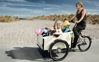 High quality low price family Electric 3 wheel Cargo Bikes