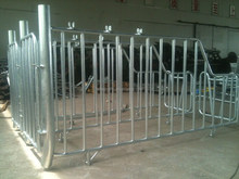 hot dip galvanized steel pig crate with feeding tube