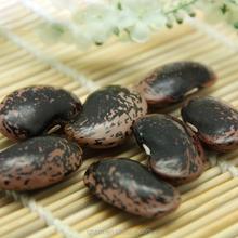 esportare prodotti di qualità nero lenticchie
