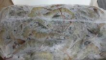 FROZEN SHRIMP HEAD ON SHELL ON 60 70 ORIGIN ECUADOR
