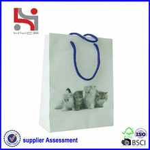 brand printing factory Haiying new design paper bag decorations