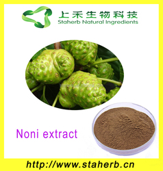 Best selling product skin whitening Noni extract, noni powder price