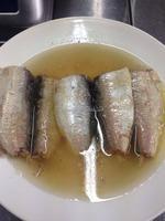 Canned sardines in brine water