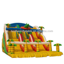 Top Sale Large Inflatable Water Slide