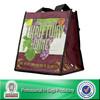 Lead Free Non Woven Custom 6 Bottle Back Liquor Bag