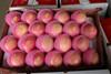 China Best Price Fresh Fruits Rich Vitamin d Apple Fruit