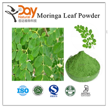 Hot sales Moringa Leaf Powder the best friends of mother