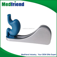 Stomach Business Name Card Holder for Pharmaceutical Promotion