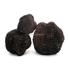 frozen truffle/dried black truffle sale price