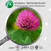 OEM Manufacturer 40% Isoflavones Red Clover Extract