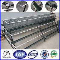 Automatic A and H Frame layer chicken cage poultry cage For Sale!