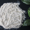100% high quality gralic powder odorless garlic powder