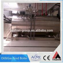 Small Steam Gas Boiler