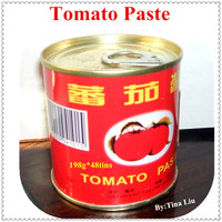 198g 28-30% brix ,double concentrate canned tomato paste factory exporter